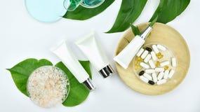 Καλλυντικά εμπορευματοκιβώτια μπουκαλιών με τα πράσινα βοτανικά φύλλα, κενή ετικέτα για το μαρκάρισμα του προτύπου Στοκ Εικόνες