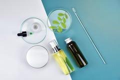 Καλλυντικά εμπορευματοκιβώτια μπουκαλιών με τα πράσινα βοτανικά φύλλα, κενή ετικέτα για το μαρκάρισμα του προτύπου, φυσική έννοια Στοκ εικόνα με δικαίωμα ελεύθερης χρήσης