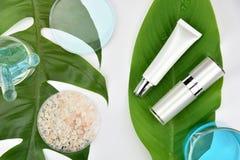 Καλλυντικά εμπορευματοκιβώτια μπουκαλιών με τα πράσινα βοτανικά φύλλα, κενή ετικέτα για το μαρκάρισμα του προτύπου Στοκ φωτογραφία με δικαίωμα ελεύθερης χρήσης