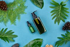 Καλλυντικά εμπορευματοκιβώτια μπουκαλιών στο πράσινο βοτανικό υπόβαθρο φύλλων, κενή ετικέτα για το μαρκάρισμα του προτύπου, φυσικ Στοκ Εικόνα