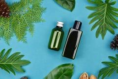 Καλλυντικά εμπορευματοκιβώτια μπουκαλιών στο πράσινο βοτανικό υπόβαθρο φύλλων, κενή ετικέτα για το μαρκάρισμα του προτύπου, φυσικ Στοκ Φωτογραφίες