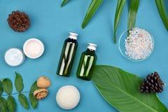 Καλλυντικά εμπορευματοκιβώτια μπουκαλιών στο πράσινο βοτανικό υπόβαθρο φύλλων, κενή ετικέτα για το μαρκάρισμα του προτύπου, φυσικ Στοκ φωτογραφίες με δικαίωμα ελεύθερης χρήσης