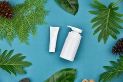 Καλλυντικά εμπορευματοκιβώτια μπουκαλιών στο πράσινο βοτανικό υπόβαθρο φύλλων, κενή ετικέτα για το μαρκάρισμα του προτύπου, φυσικ Στοκ φωτογραφία με δικαίωμα ελεύθερης χρήσης