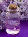 Καλλυντικό προϊόν με τα ιώδη λουλούδια, φρέσκα ως έννοια άνοιξη Στοκ εικόνα με δικαίωμα ελεύθερης χρήσης