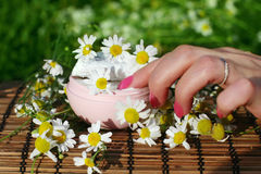 καλλυντικό χέρι κρέμας φυ&s Στοκ Εικόνα