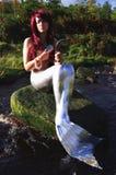 καλλωπίζοντας γοργόνα Στοκ εικόνα με δικαίωμα ελεύθερης χρήσης
