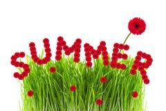 καλοκαίρι έννοιας Στοκ Φωτογραφίες