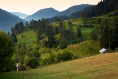 καλοκαίρι βουνών της Βο&ups Στοκ εικόνα με δικαίωμα ελεύθερης χρήσης