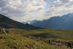 καλοκαίρι βουνών altai Στοκ εικόνα με δικαίωμα ελεύθερης χρήσης