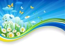 καλοκαίρι εμβλημάτων chamomiles απεικόνιση αποθεμάτων