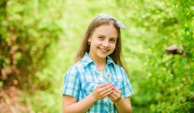Καλοκαίρι εορτασμού Όμορφος και πλήρης συμβολισμός πικραλίδων Φως ως πικραλίδα r Αγροτική παραγωγή ύφους κοριτσιών στοκ φωτογραφίες