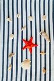Καλοκαίρι, κάποια ουσία θάλασσας σε άσπρο και γδυμένος στοκ εικόνες με δικαίωμα ελεύθερης χρήσης