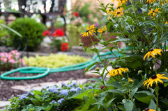 καλοκαίρι κήπων Στοκ Φωτογραφίες