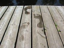 καλοκαίρι λεπτομέρεια&sigm Στοκ εικόνα με δικαίωμα ελεύθερης χρήσης