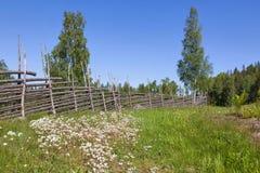 καλοκαίρι λιβαδιών Στοκ Εικόνα