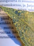 καλοκαίρι μνήμης Στοκ φωτογραφίες με δικαίωμα ελεύθερης χρήσης