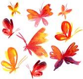 καλοκαίρι πεταλούδων watercolour Στοκ εικόνα με δικαίωμα ελεύθερης χρήσης