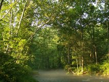 καλοκαίρι ποταμών πυρίτιδ Στοκ φωτογραφία με δικαίωμα ελεύθερης χρήσης