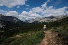 Καλοκαίρι που στα καναδικά δύσκολα βουνά στοκ φωτογραφία με δικαίωμα ελεύθερης χρήσης