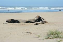 Καλοκαίρι στην παραλία παραλιών, βόρεια ακτή του Όρεγκον στοκ φωτογραφίες