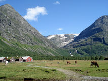 καλοκαίρι της αγροτική&sigma Στοκ εικόνες με δικαίωμα ελεύθερης χρήσης