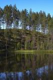 καλοκαίρι τοπίων Στοκ Φωτογραφίες