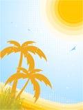 καλοκαίρι τροπικό Στοκ εικόνες με δικαίωμα ελεύθερης χρήσης