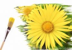 καλοκαίρι χρωμάτων στοκ εικόνα με δικαίωμα ελεύθερης χρήσης