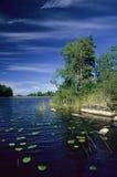 καλοκαίρι 030 Στοκ Εικόνες