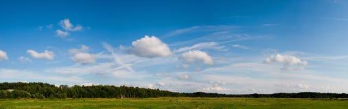 καλοκαίρι pasturage Στοκ φωτογραφία με δικαίωμα ελεύθερης χρήσης