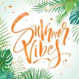 Καλοκαίρι vibes που γράφει διανυσματική απεικόνιση