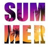 Καλοκαίρι Word από τη διανυσματική απεικόνιση υποβάθρου σκιαγραφιών φύλλων φοινίκων Beautifil απεικόνιση αποθεμάτων