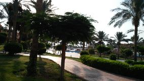 καλοκαιρινές διακοπές ήλιων στοκ φωτογραφίες με δικαίωμα ελεύθερης χρήσης