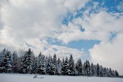 καλυμμένα δέντρα χιονιού π&ep Όμορφα χειμερινά τοπία Παγετός ν Στοκ εικόνες με δικαίωμα ελεύθερης χρήσης