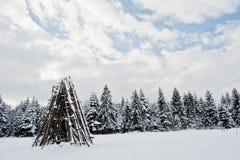 καλυμμένα δέντρα χιονιού π&ep Όμορφα χειμερινά τοπία Παγετός ν Στοκ Φωτογραφία