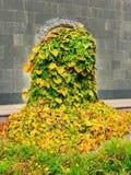 καλυμμένα φυτά πορτών Στοκ Φωτογραφίες