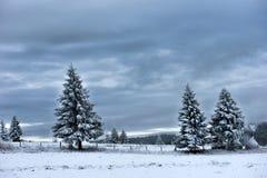 καλυμμένα hoarfrost δέντρα χιονιού βουνών βουνών σπιτιών Στοκ εικόνες με δικαίωμα ελεύθερης χρήσης