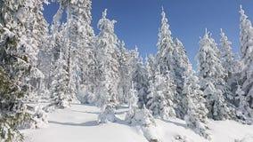 καλυμμένα hoarfrost δέντρα χιονιού βουνών βουνών σπιτιών Στοκ φωτογραφίες με δικαίωμα ελεύθερης χρήσης