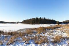 καλυμμένη λίμνη πάγου Στοκ φωτογραφίες με δικαίωμα ελεύθερης χρήσης