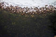 Καλυμμένη χειμώνας κοιλάδα σε Spearfish, SD Το νερό σε αυτήν την λίμνη δεν θα παγώσει στοκ εικόνες