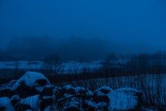Καλυμμένοι υδρονέφωση τομείς και δέντρα Στοκ φωτογραφία με δικαίωμα ελεύθερης χρήσης