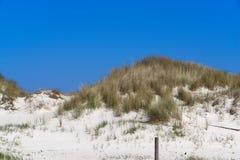 Καλυμμένοι χλόη αμμόλοφοι στην όμορφη άσπρη παραλία άμμου στοκ εικόνα