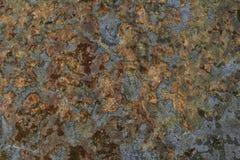 καλυμμένος άλγη βράχος Στοκ εικόνα με δικαίωμα ελεύθερης χρήσης