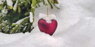 Καλυμμένος με το άσπρο χιόνι, διακοσμήσεις Χριστουγέννων του νέου έτους με μορφή μιας καρδιάς: ένα δώρο για τις χειμερινές διακοπ στοκ εικόνα