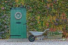 καλυμμένος σιταποθήκη κισσός φθινοπώρου παλαιός Στοκ Εικόνες