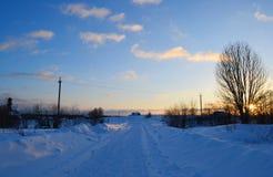 καλυμμένος χειμώνας ηλι&omi Στοκ φωτογραφία με δικαίωμα ελεύθερης χρήσης