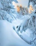 καλυμμένος χειμώνας ιστορίας χιονιού σπιτιών νεράιδων δασικός ξύλινος Ηλιοβασίλεμα στα βουνά Στοκ φωτογραφία με δικαίωμα ελεύθερης χρήσης