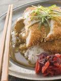καλυμμένο κάρρυ ξίδι tonkatsu σάλτσας ρυζιού Στοκ Φωτογραφίες