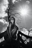 καλυμμένο κορίτσι δάσος &k στοκ εικόνα με δικαίωμα ελεύθερης χρήσης