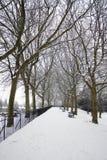 καλυμμένο χιόνι πάρκων Στοκ Εικόνες